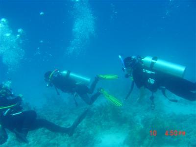 brian.cedric.diving.jpg