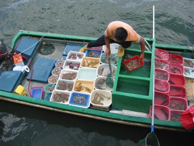 hong.kong.seafood.sellers.sai.kung.jpg
