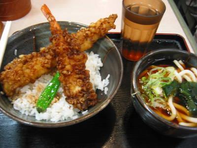 japan.tempura-don.20050406.jpg