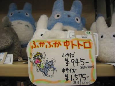 japan.totoro.expensive.20050407.jpg