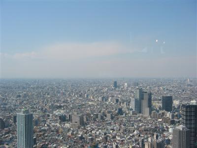tokyo.view.from.tokyo.metro.govt.bldg.jpg