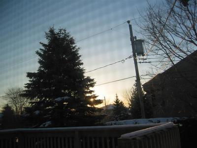 morning.sun.jpg