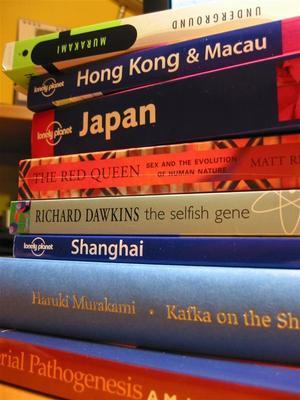 vacation.reading.jpg